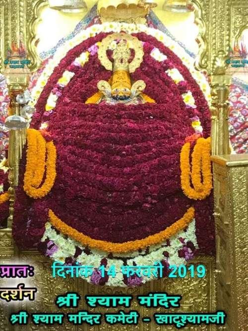 Khatu Shyam Darshan 14.02.2019