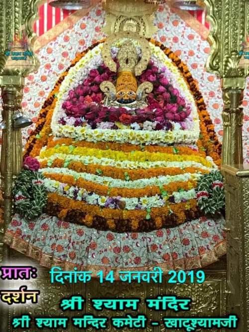 Khatu Shyam Darshan 14.01.2019