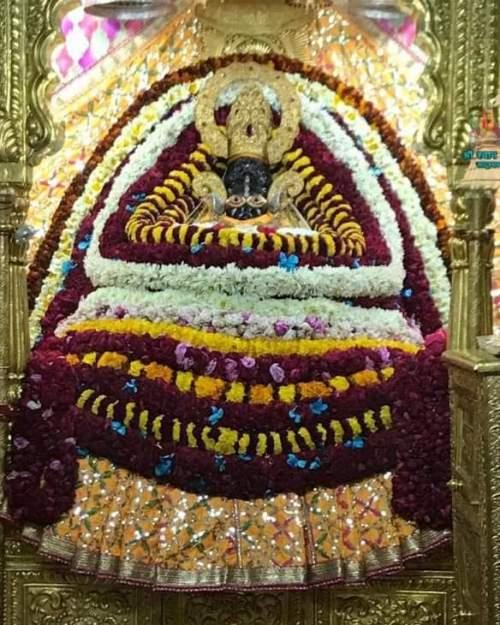 khatu shyam darshan 09.01.2019