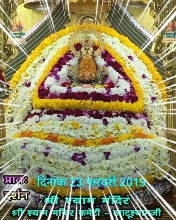 Khatu Shyam Darshan 23.02.2019