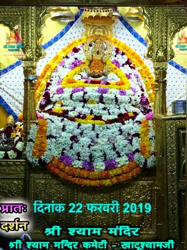 khatu shyam darshan 22.02.2019