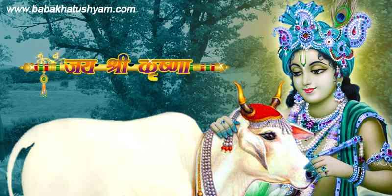 shyam ji images