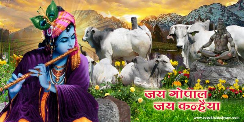 Khatushyam baba images.jpg