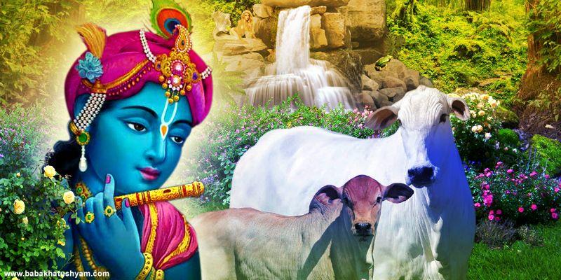 shri shyam ji hd imagesss